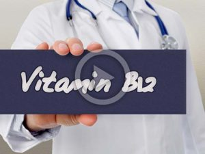 Vitamin B12 | Meat Your Future