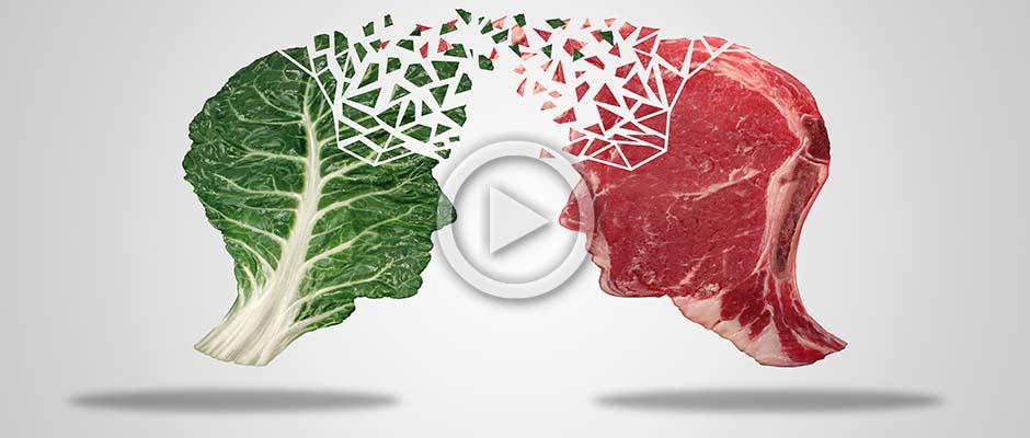 Omnivores, Herbivore or Carnivores? | Meat Your Future