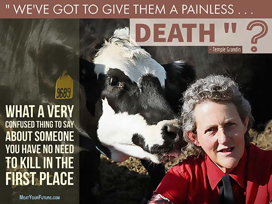 Temple Grandin has a very confusing message about animals | Meat Your Future