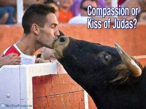 Compassion of Kiss of Judas | Meat Your Future