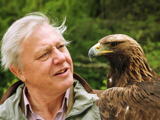 Sir David Attenborough | Meat Your Future
