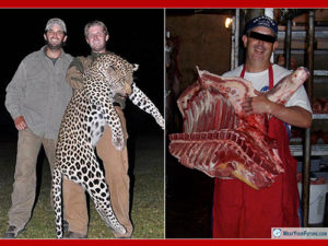 Upset About Trophy Hunting? | Meat Your Future