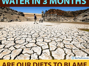 Cape Town to Run Out of Water - Are Our Diets to Blame? | Meat Your Future