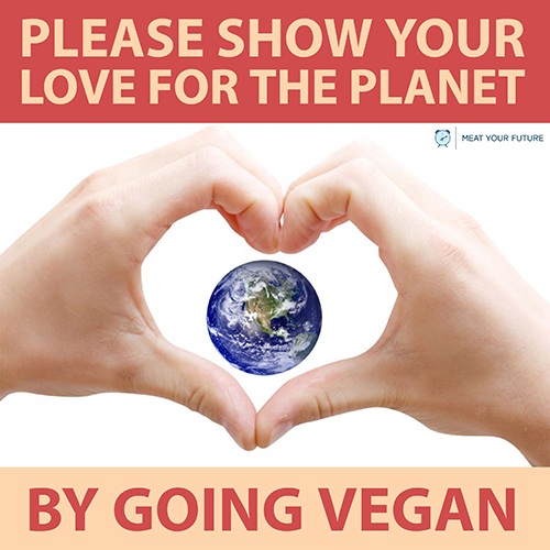 Go Vegan For the Planet   Meat Your Future