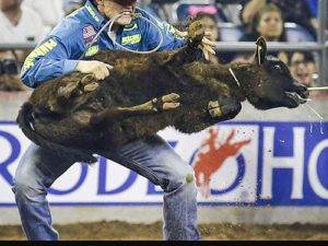 Rodeos - Tradition does Not Justify Cruelty | Meat Your Future
