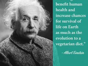 Albert Einstein | Meat Your Future