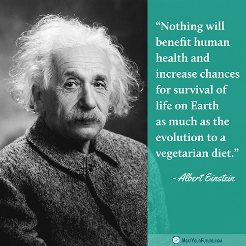Albert Einstein | Meat Your Future