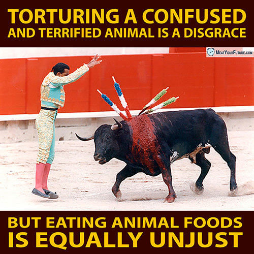 Torturing a Confused Animal is a Disgrace, But Eating Animal Foods is Equally Unject | Meat Your Future