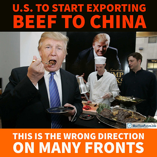 US to Start Importing Beef to China | Meat Your Future