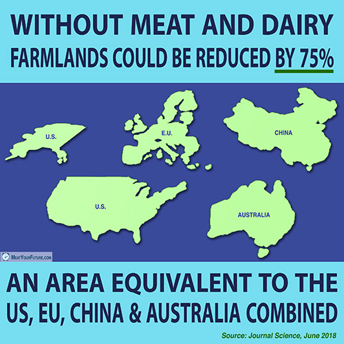 Without Meat and Dairy Farmlands Could be Reduced by 75% | Meat Your Future