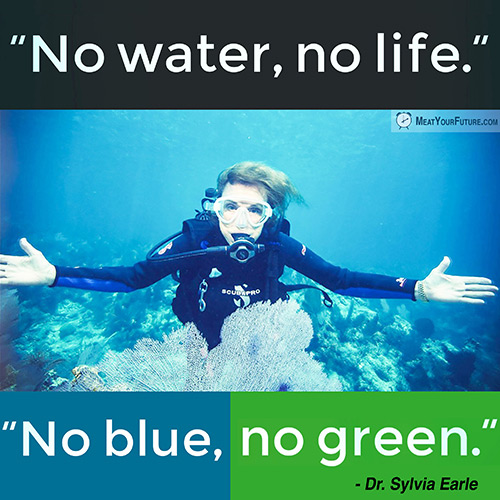 No water, no life. No blue, no green. | Meat Your Future