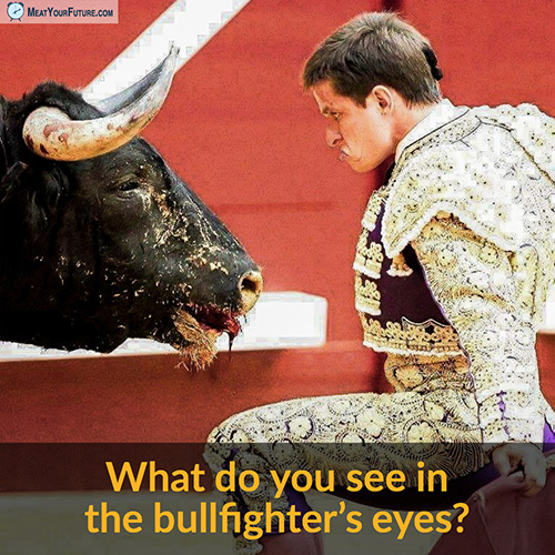 What Do You See In the Bullfighter's Eyes?