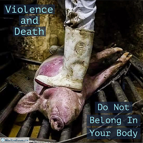 Death and Violence Do Not Belong in Your Body | Meat Your Future