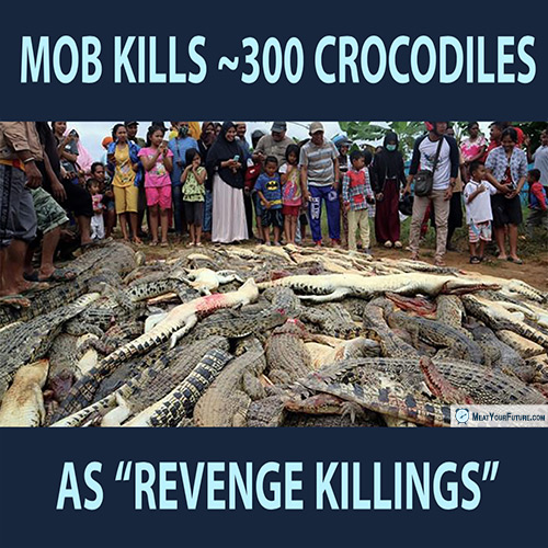 "Mob Kills Nearly 300 Crocodiles as ""Revenge Killings"" 