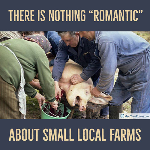 "There is Nothing ""Romantic"" About Small Local Farms 