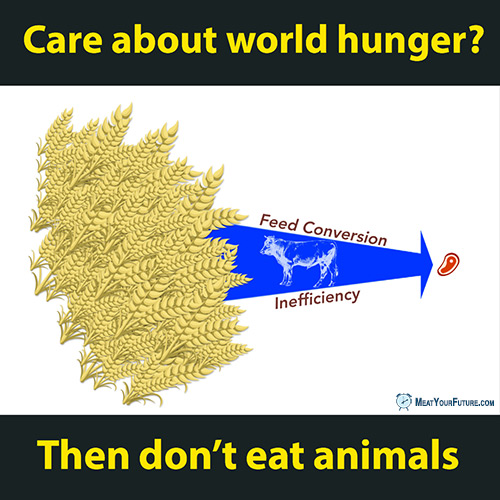 Care About World Hunger? Then Go Vegan | Meat Your Future