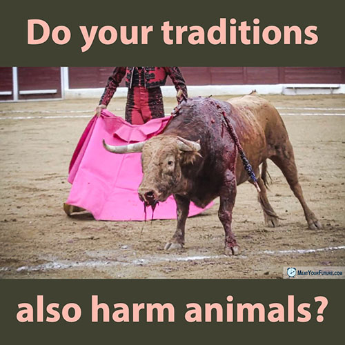 Do Your Traditions Also Harm Animals? | Meat Your Future