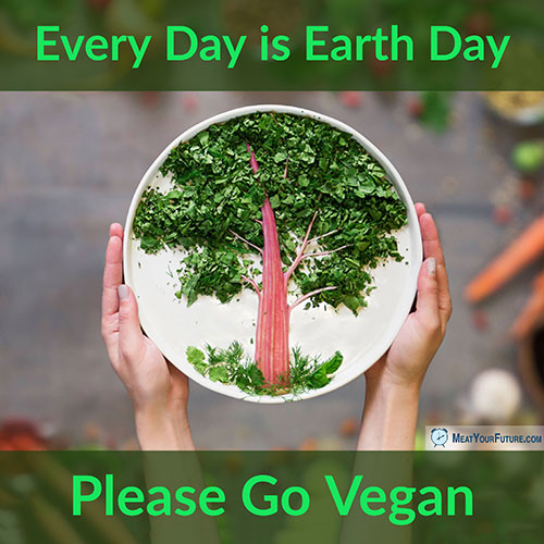 Every Day is Earth Day - Please Go Vegan | Meat Your Future